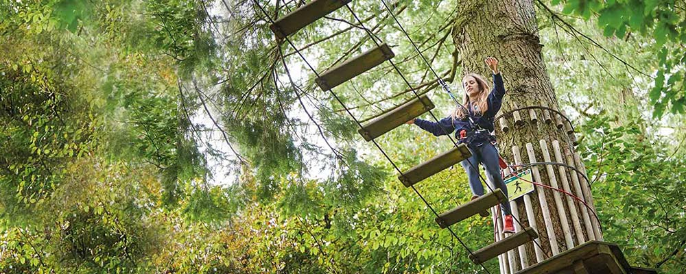 GO APE Moors Valley - Dorset attraction