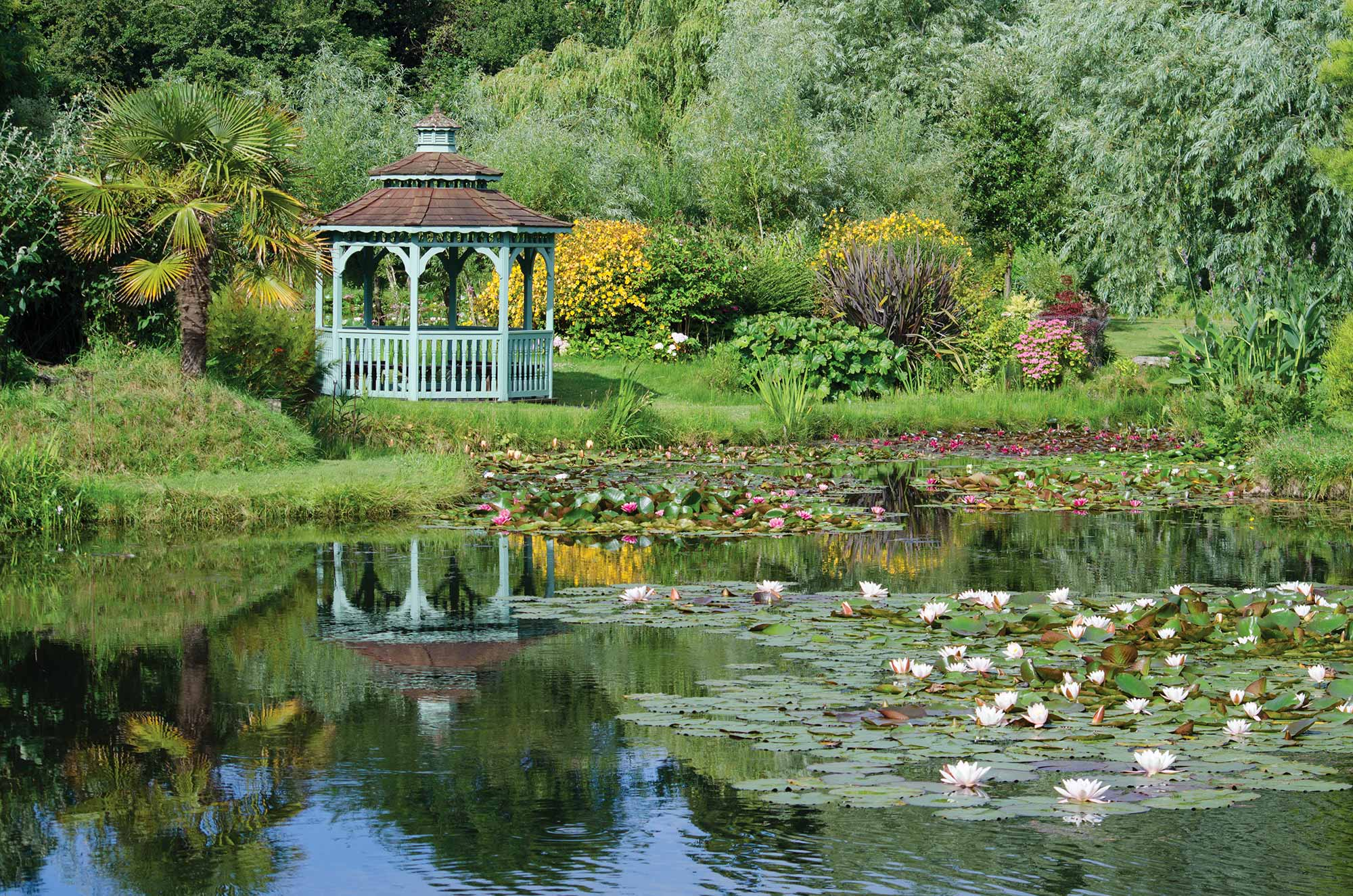 Bennetts Water Gardens - Best of Dorset Attractions