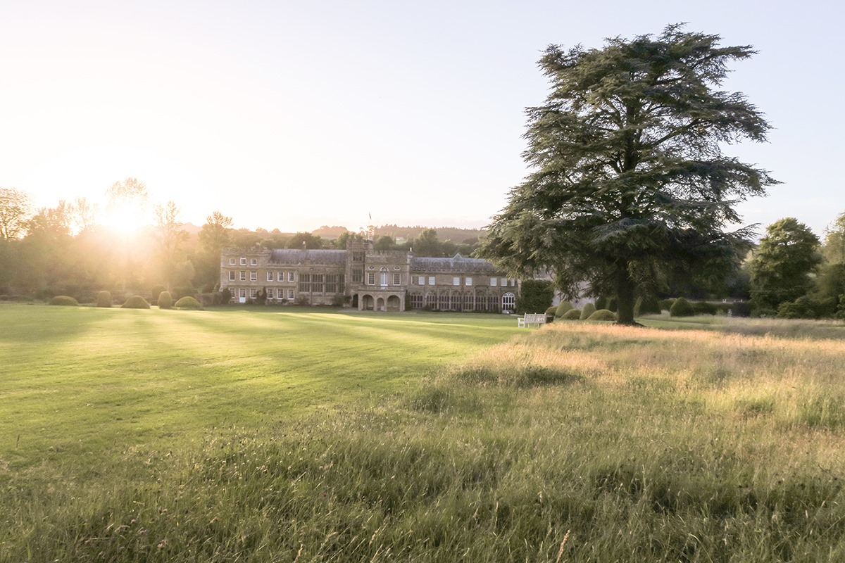 Meadows in June at Forde Abbey