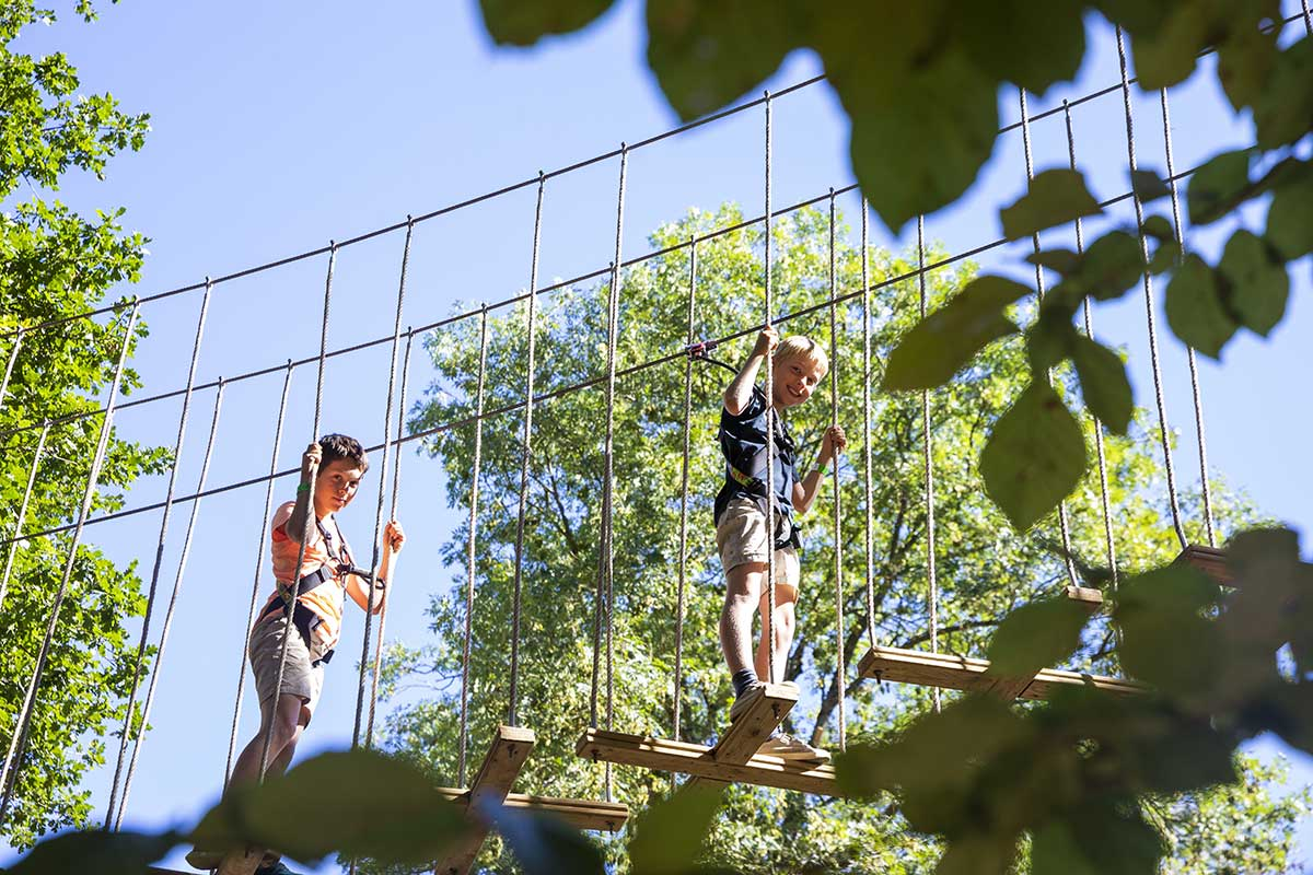 Treetop Adventure at Go Ape Moors Valley
