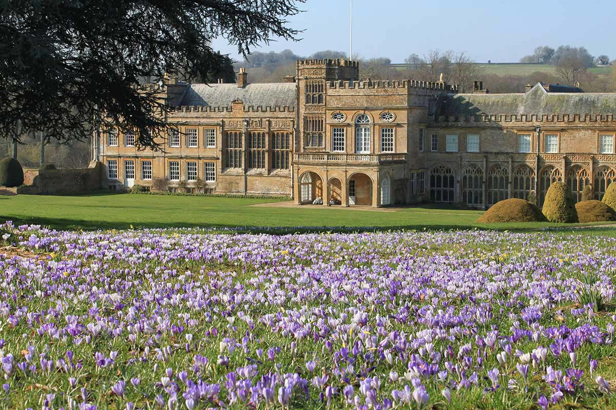 Plant and Gardening Fair at Forde Abbey