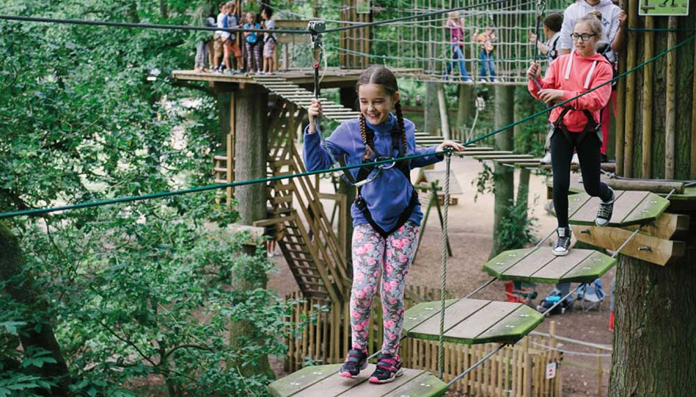 Family on the high ropes at Go Ape Moors Valley