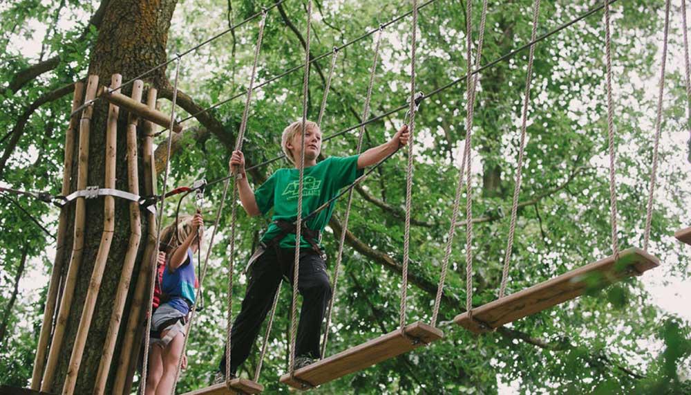 Go Ape's Tree Top Junior course