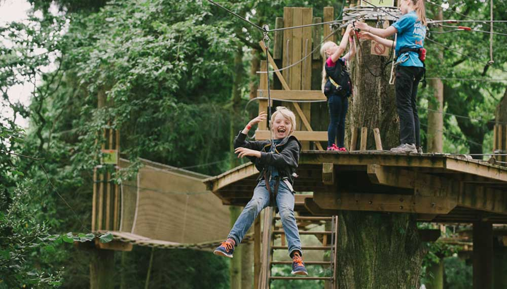 Kids love the zip wire at Go Ape Moors Valley