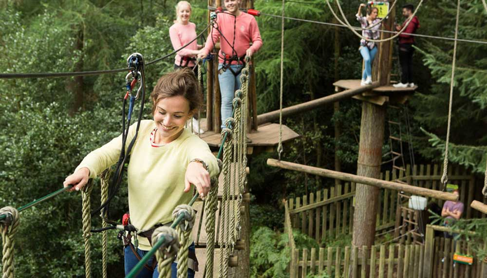 Tree Top Adventure course at Go Ape Moors Valley