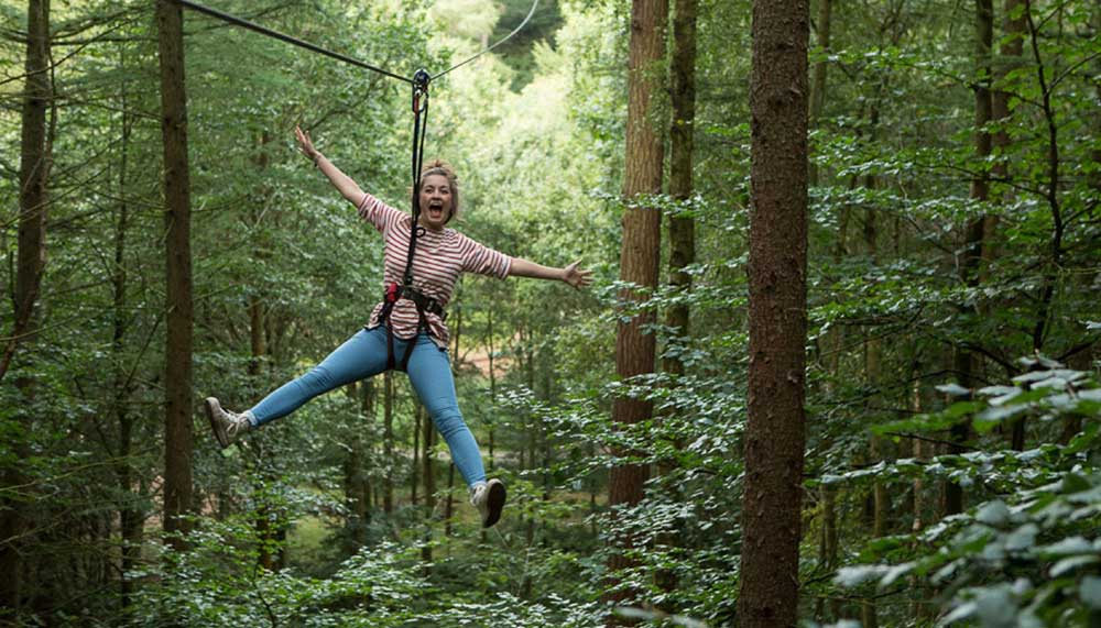 Zip Wire Experience at Go Ape Moors Valley