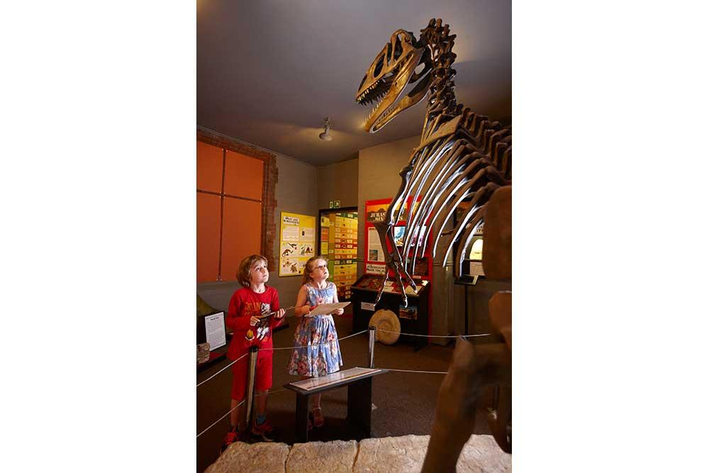 Amazing displays at The Dinosaur Museum