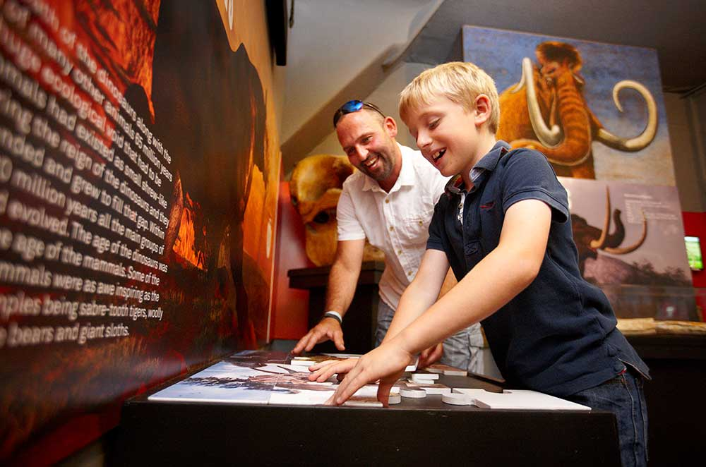 Family fun with interactive exhibitions at the Dinosaur Museum in Dorset