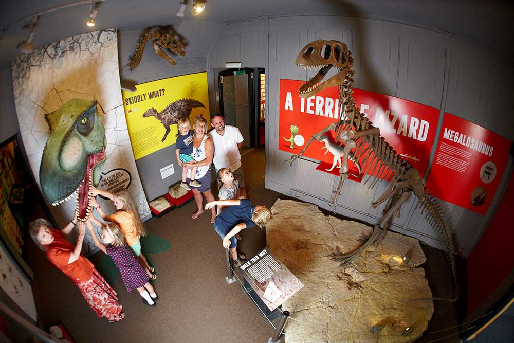 Impressive exhibitions to be seen at the Dinosaur Museum