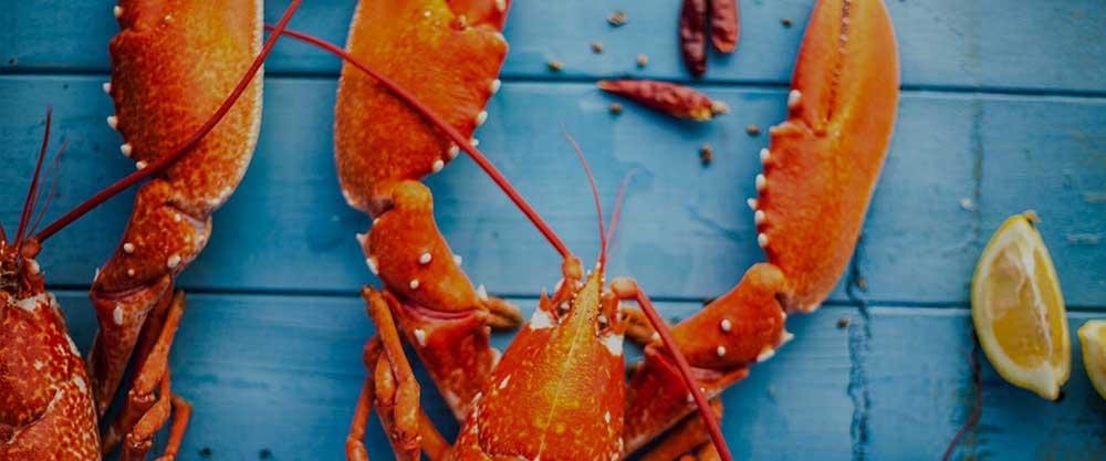 Fresh Dorset seafood