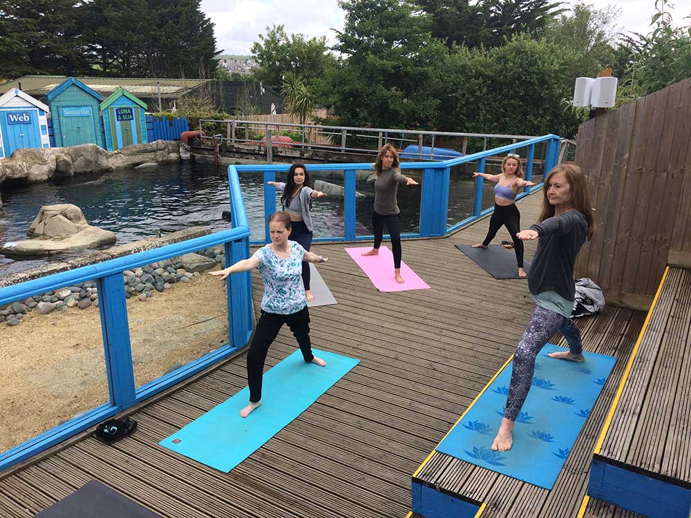 Yogis Celebrate International Yoga Day With A Difference At Weymouth SEA LIFE