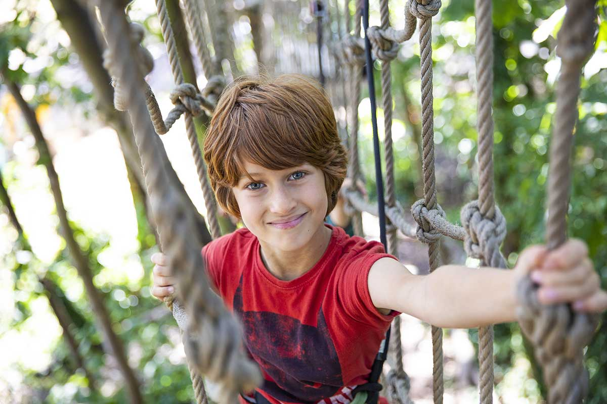 Treetop Adventure at Go Ape Moors Valley