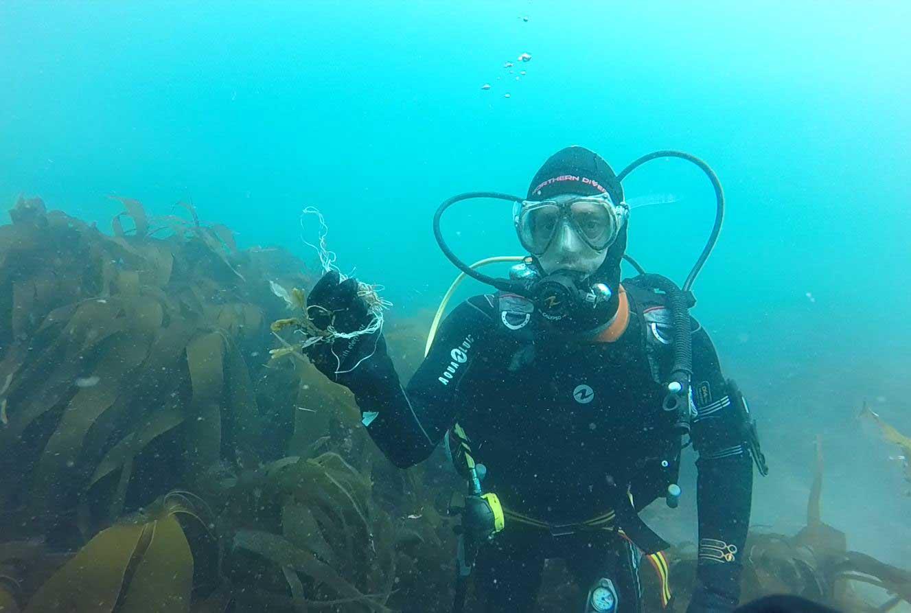 Weymouth SEA LIFE Begin Shore Diving Beach Cleans