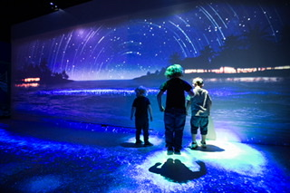 SEA LIFE Weymouth To Reopen With Brand New Immersive Experience