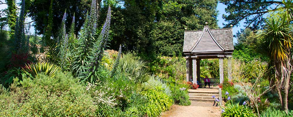 Abbotsbury Subtropical Gardens - a Best of Dorset Attraction